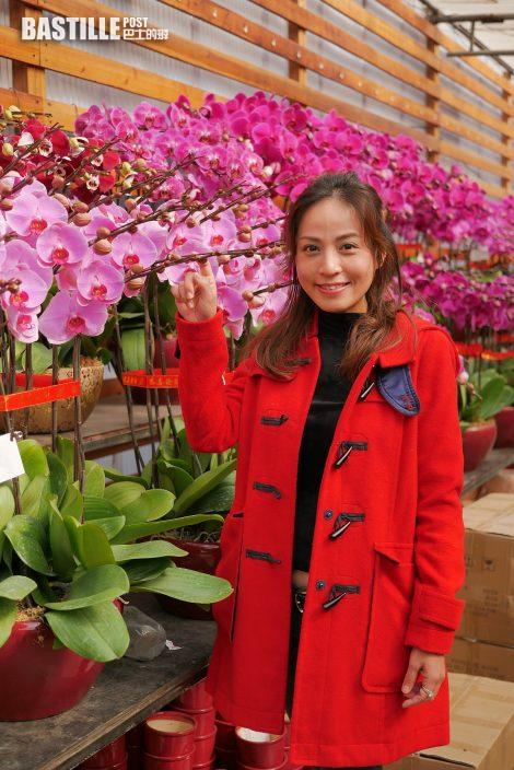 實惠與花農合作 市民20日起可到門店或網店買花