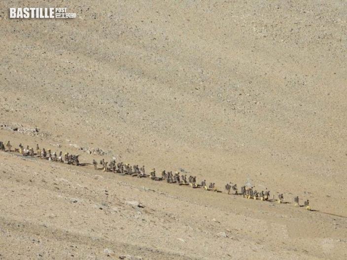 中印按協議從班公湖附近撤離 清拆營地還原地貌