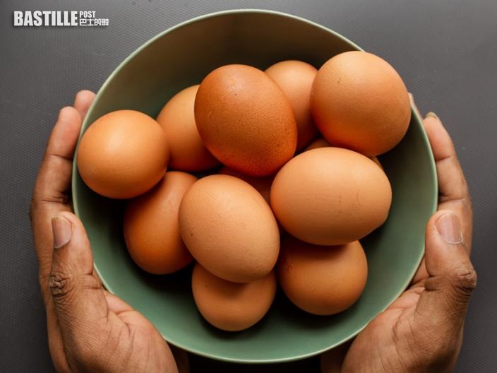 【健康talk】1歲前不宜食蛋白?營養師教正確食蛋指引
