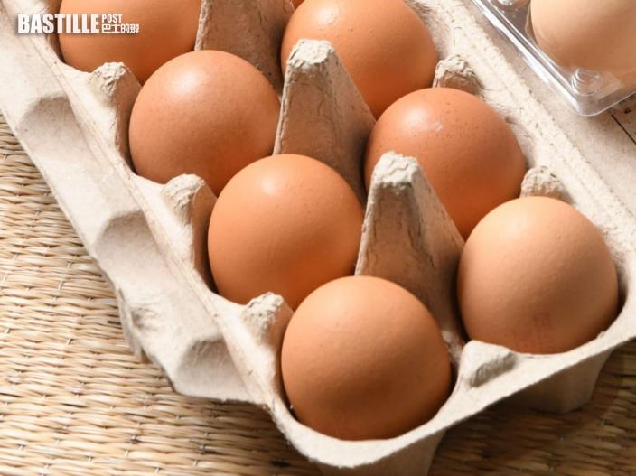 台兩歲童摸雞蛋後進食 染沙門氏菌釀嚴重腹膜炎