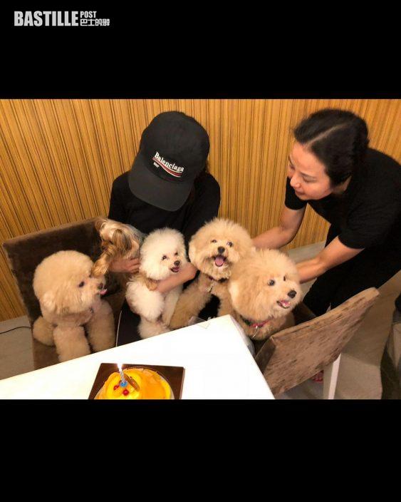 心痛啪針送走重病「荔枝仔」      蔡卓妍一周內經歷兩次喪犬之痛