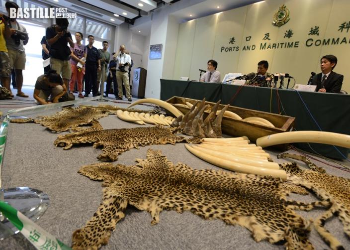 審計署報告顯示 漁護署無記錄查驗貨物比例逾10萬次