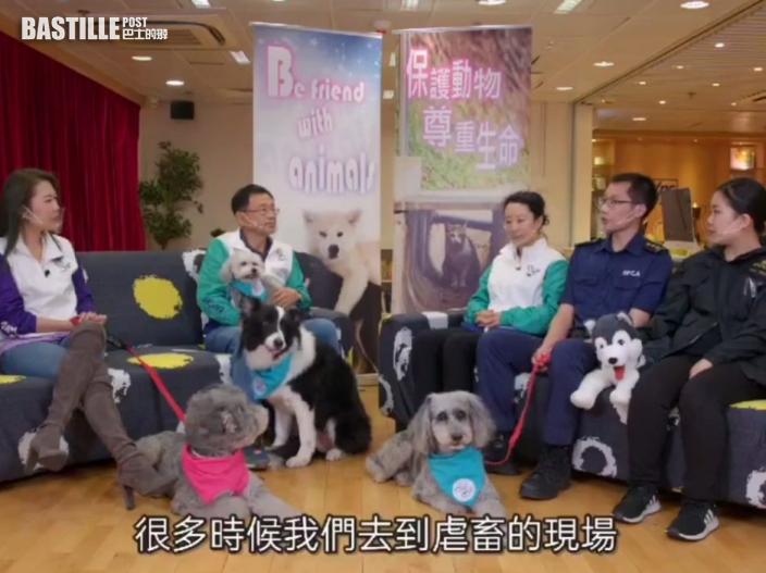 警方夥宋芝齡拍片教辨別受虐動物 籲市民攜手守護動物