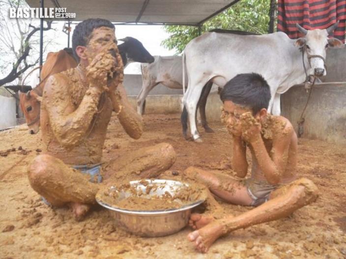【有片】印度教徒牛屎塗身稱有助防疫 醫生批毫無科學根據