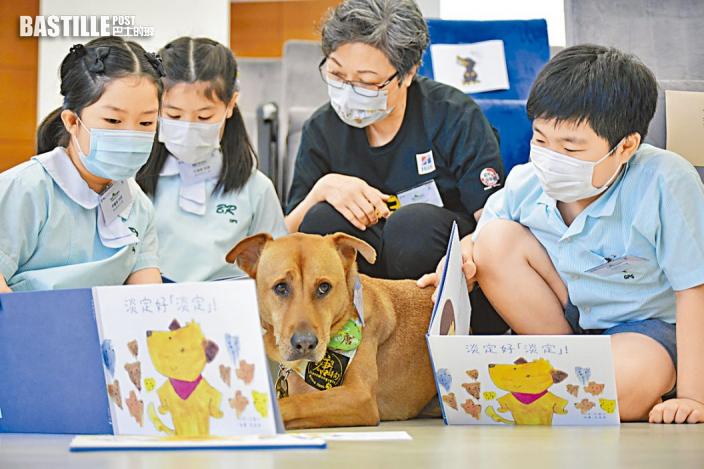 港大研伴讀犬成效 提升學生同理心