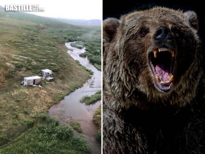 美漢野外連續7天遭同一灰熊襲擊 爬屋頂畫SOS獲救