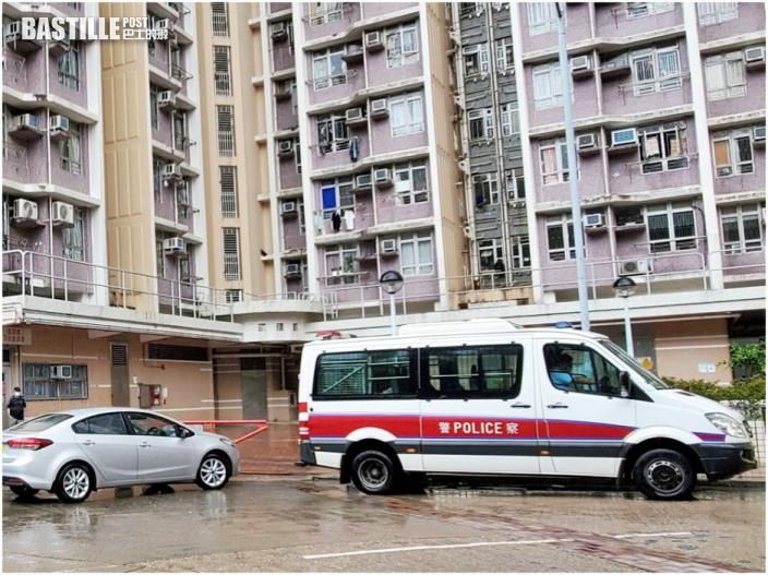 寶達邨行人路驚現8倉鼠屍體 警方調查事件