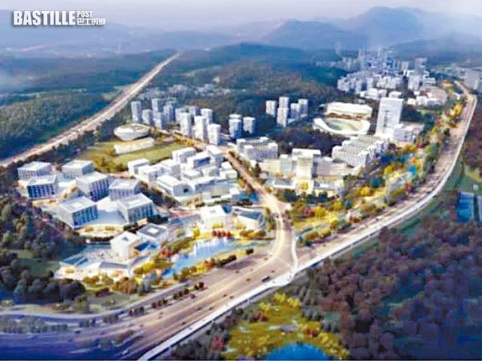 張翔:港大深圳校以「一校兩區」模式營運 師生可往來港深校區上課