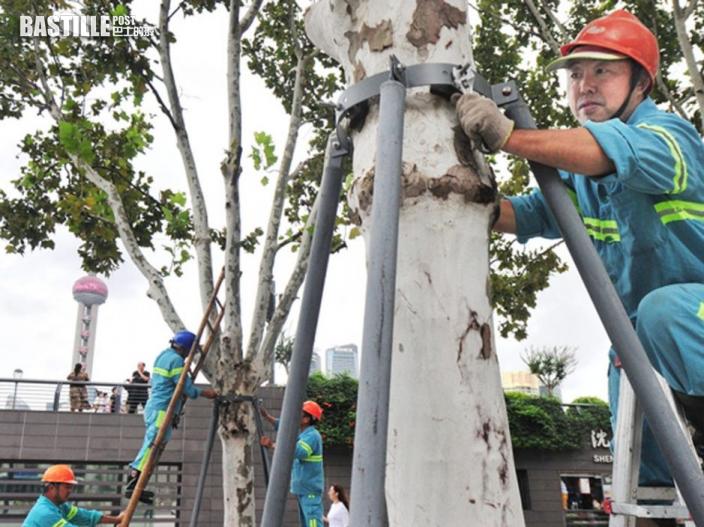 颱風燦都來襲 上海轉移安置2.8萬人