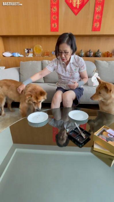真係抵錫  汪明荃親手餵兩愛犬嘆特製月餅聽話乖巧
