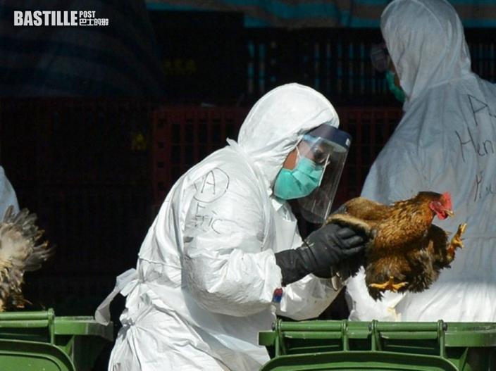 湖南40歲女子染H5N6禽流感 衞生防護中心密切監察
