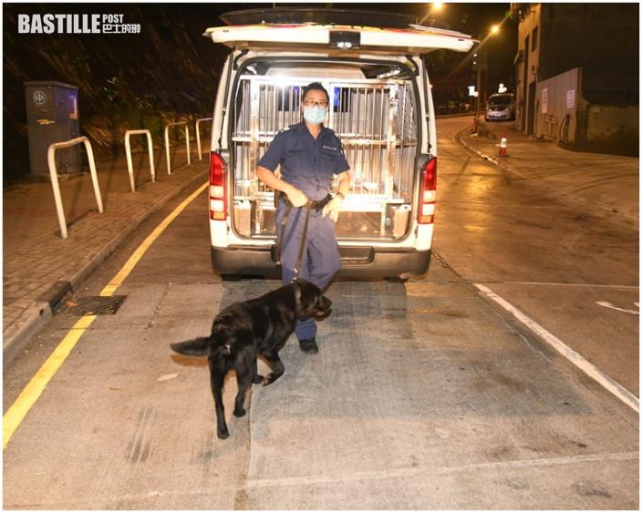 報失貨車葵涌逃捕撞警車 警拔槍拘2男1女