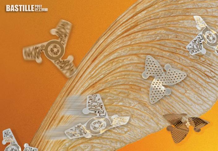 最微型飛行器面世長度僅1mm 種子借風播種原理啟發