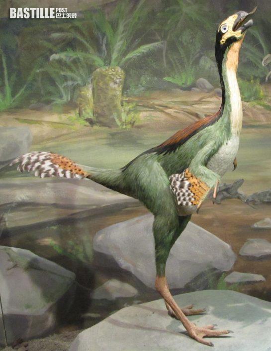 科學家發現1.25億年前恐龍軟骨細胞或存在DNA
