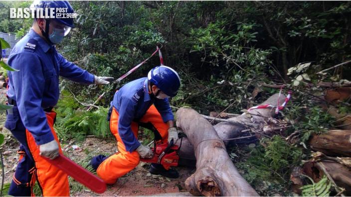 民安隊逾800人一連兩日演習 模擬超強颱風襲港