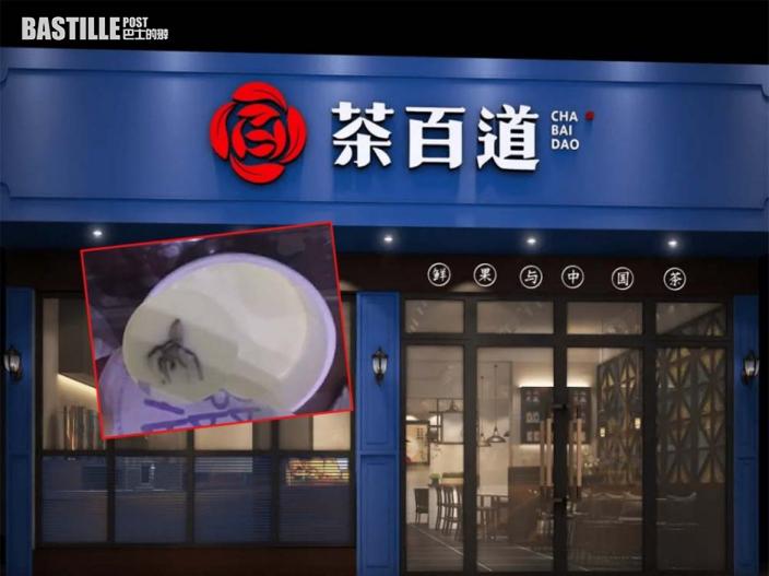 芝士奶蓋杯底藏蜘蛛 奶茶店稱問題不涉店方惟同意賠償