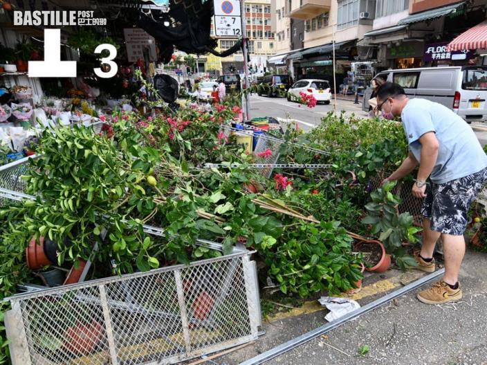 圓規襲港 天氣開始轉差市區刮大風 花墟多盆盆栽被吹冧
