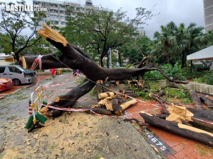 圓規襲港 東頭邨停車場塌樹 至少波及4車